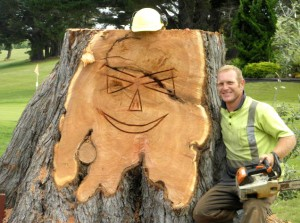 Tree Services Whangarei