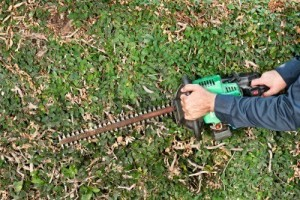 Garden maintenance picture showing hedge trimmer