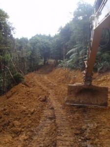 Site Clearing Whangarei